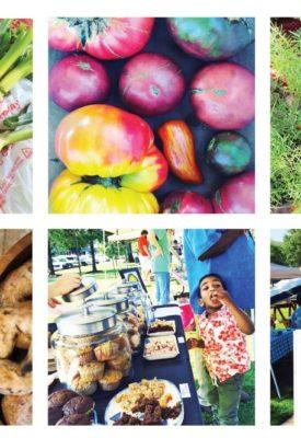 MS Delta fresh markets- Delta Business Journal